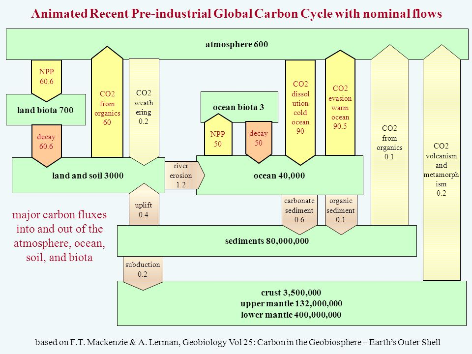 atmosphere 600 land biota 700 ocean biota 3 ocean 40,000 land and soil 3000 NPP 50 decay 60.6 NPP 60.6 decay 50 Animated Recent Pre-industrial Global Carbon Cycle with nominal flows based on F.T.