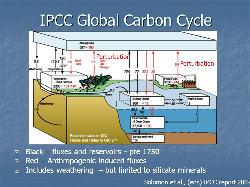 IPCC Global Carbon Cycle Solomon et al., (eds) IPCC report 2007  Black – fluxes and reservoirs - pre 1750  Red – Anthropogenic induced fluxes  Incl