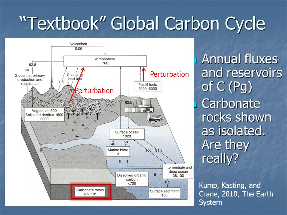 """Textbook"" Global Carbon Cycle Annual fluxes and reservoirs of C (Pg) Annual fluxes and reservoirs of C (Pg) Carbonate rocks shown as isolated. Are th"
