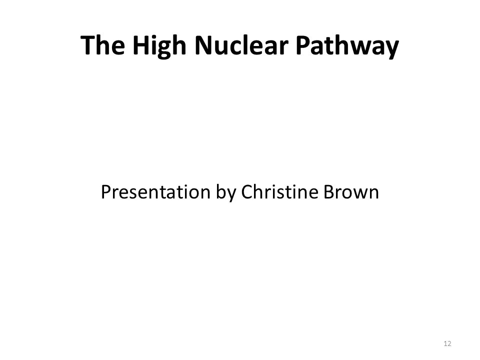 The High Nuclear Pathway Presentation by Christine Brown 12