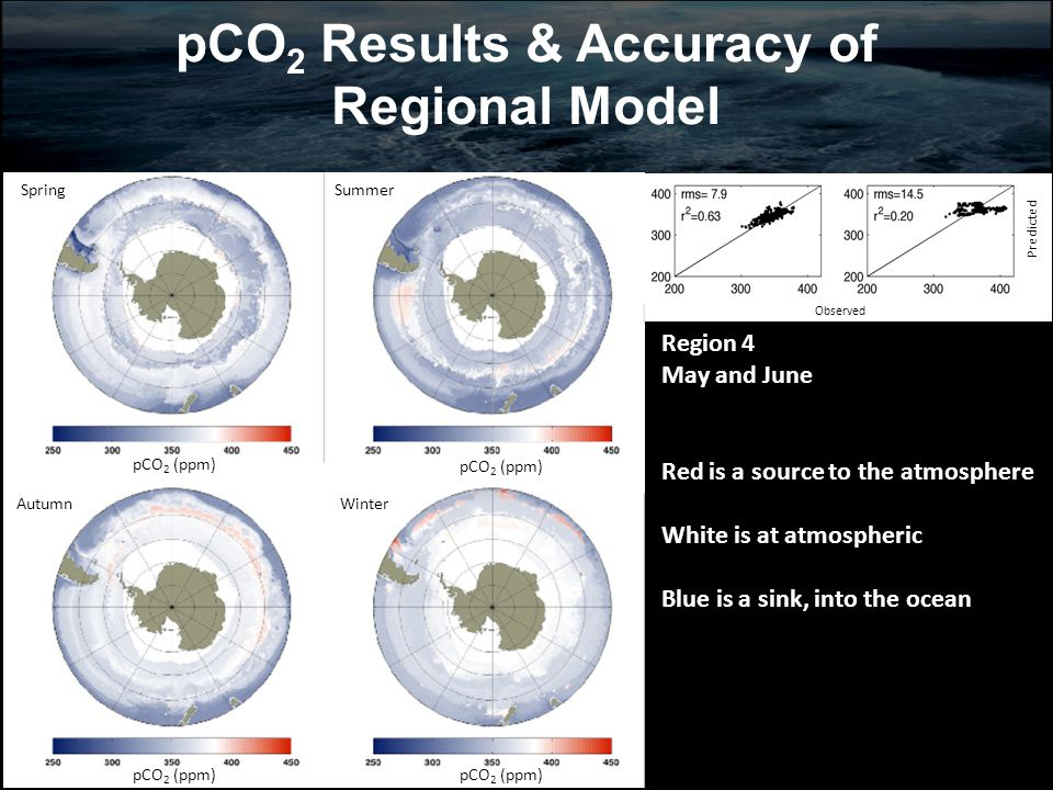 pCO 2 Results & Accuracy of Regional Model SummerSpring AutumnWinter pCO 2 (ppm) Obo Observed Predicted Region 4 May and June Red is a source to the atmosphere White is at atmospheric Blue is a sink, into the ocean