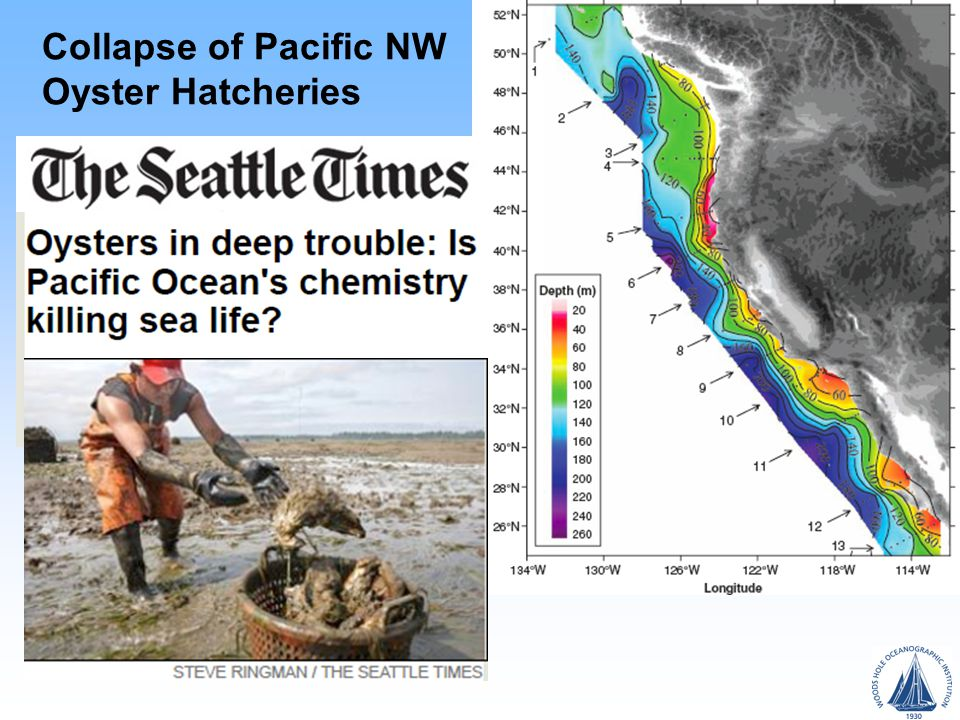 Collapse of Pacific NW Oyster Hatcheries