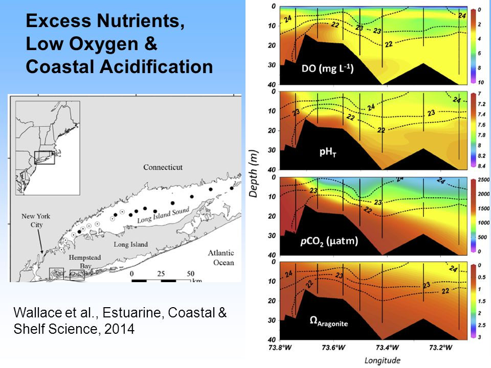 Excess Nutrients, Low Oxygen & Coastal Acidification Wallace et al., Estuarine, Coastal & Shelf Science, 2014