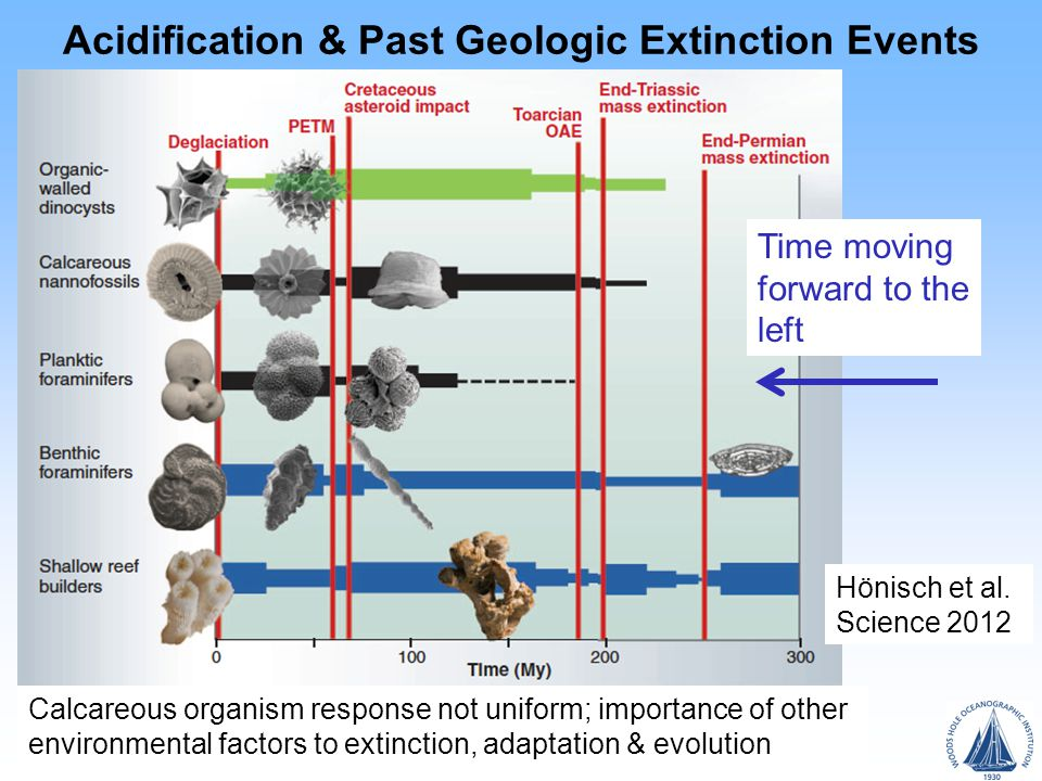 Acidification & Past Geologic Extinction Events Time moving forward to the left Hönisch et al.