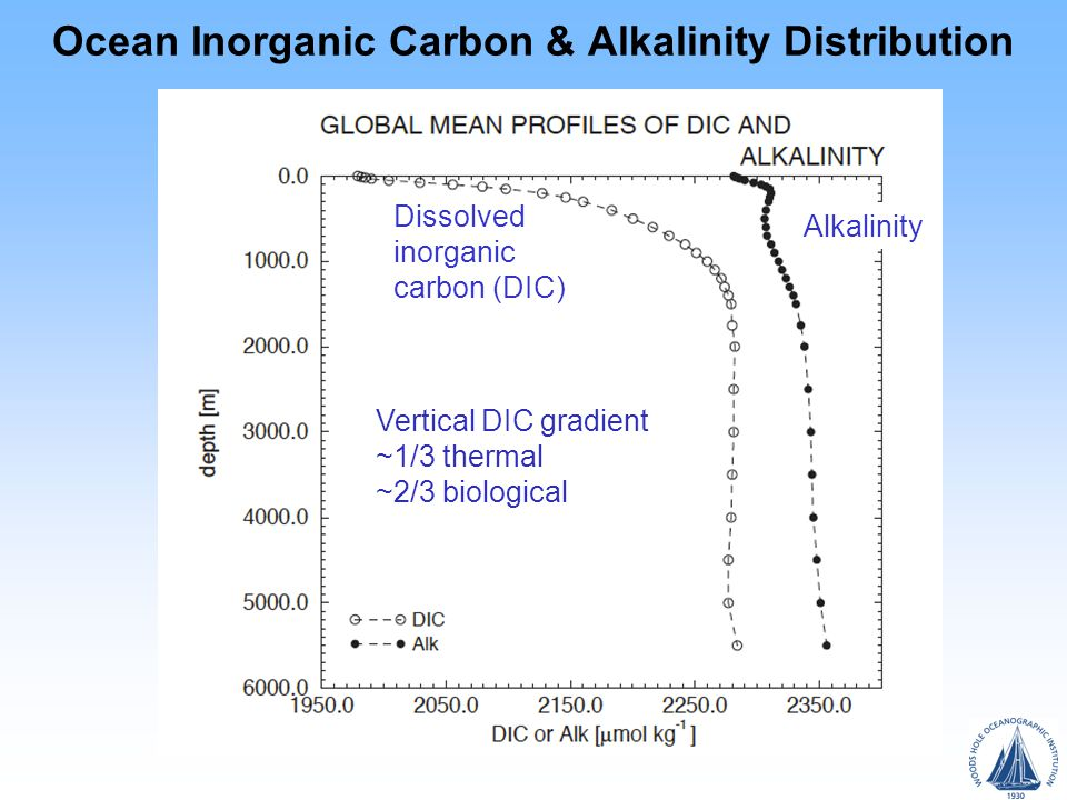 Ocean Inorganic Carbon & Alkalinity Distribution Dissolved inorganic carbon (DIC) Alkalinity Vertical DIC gradient ~1/3 thermal ~2/3 biological