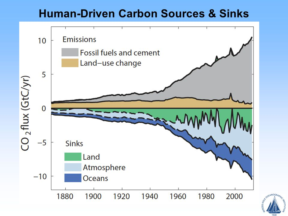Human-Driven Carbon Sources & Sinks