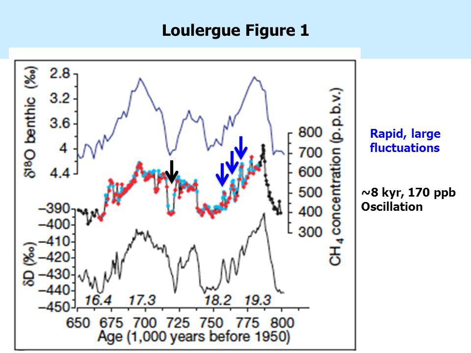 Loulergue Figure 1 Rapid, large fluctuations ~8 kyr, 170 ppb Oscillation