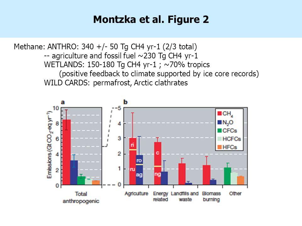 Montzka et al.