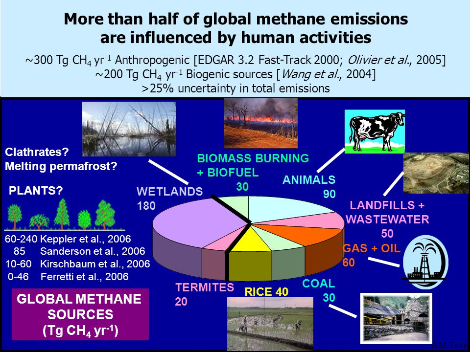 More than half of global methane emissions are influenced by human activities ~300 Tg CH 4 yr -1 Anthropogenic [EDGAR 3.2 Fast-Track 2000; Olivier et al., 2005] ~200 Tg CH 4 yr -1 Biogenic sources [Wang et al., 2004] >25% uncertainty in total emissions ANIMALS 90 LANDFILLS + WASTEWATER 50 GAS + OIL 60 COAL 30 RICE 40 TERMITES 20 WETLANDS 180 BIOMASS BURNING + BIOFUEL 30 GLOBAL METHANE SOURCES (Tg CH 4 yr -1 ) PLANTS.