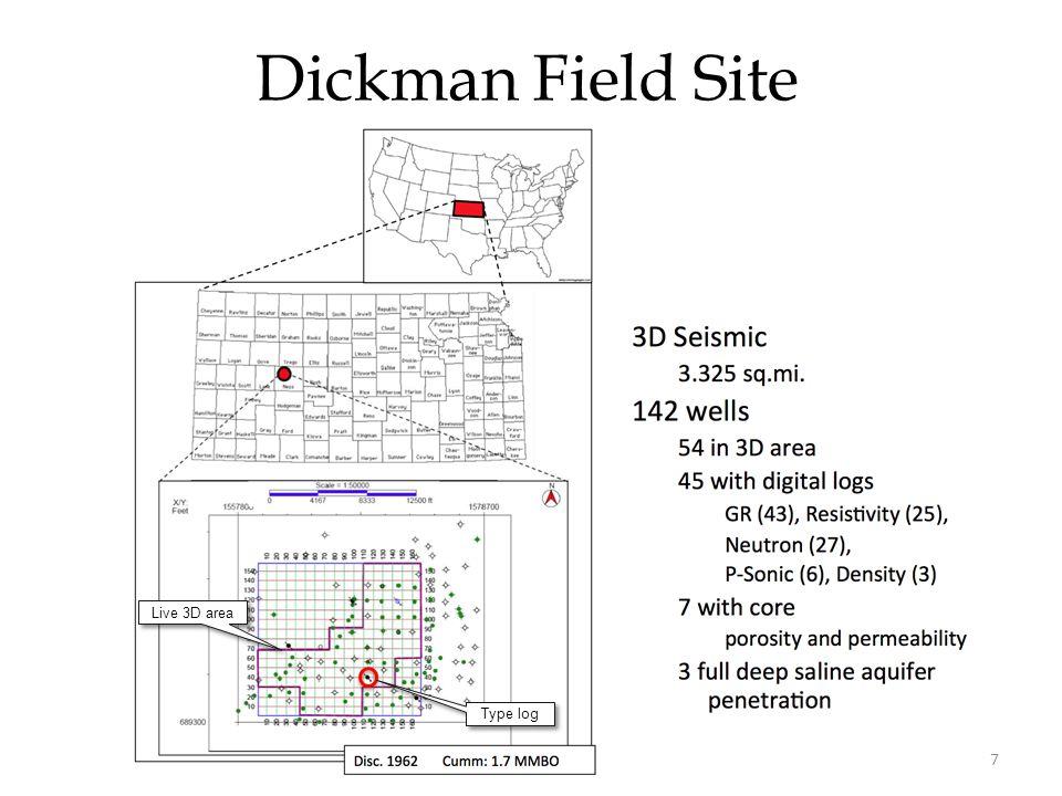 Dickman Field Site Live 3D area Type log 7
