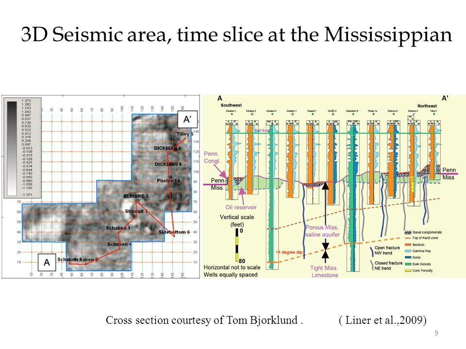 3D Seismic area, time slice at the Mississippian ( Liner et al.,2009)Cross section courtesy of Tom Bjorklund.