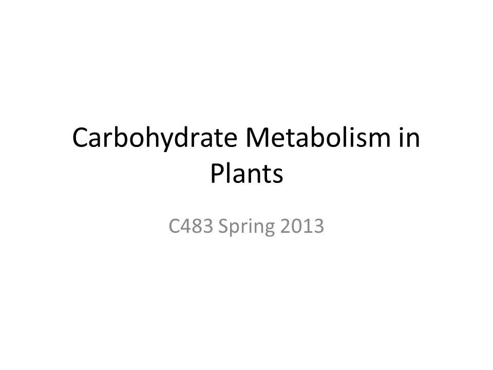 Carbohydrate Metabolism in Plants C483 Spring 2013