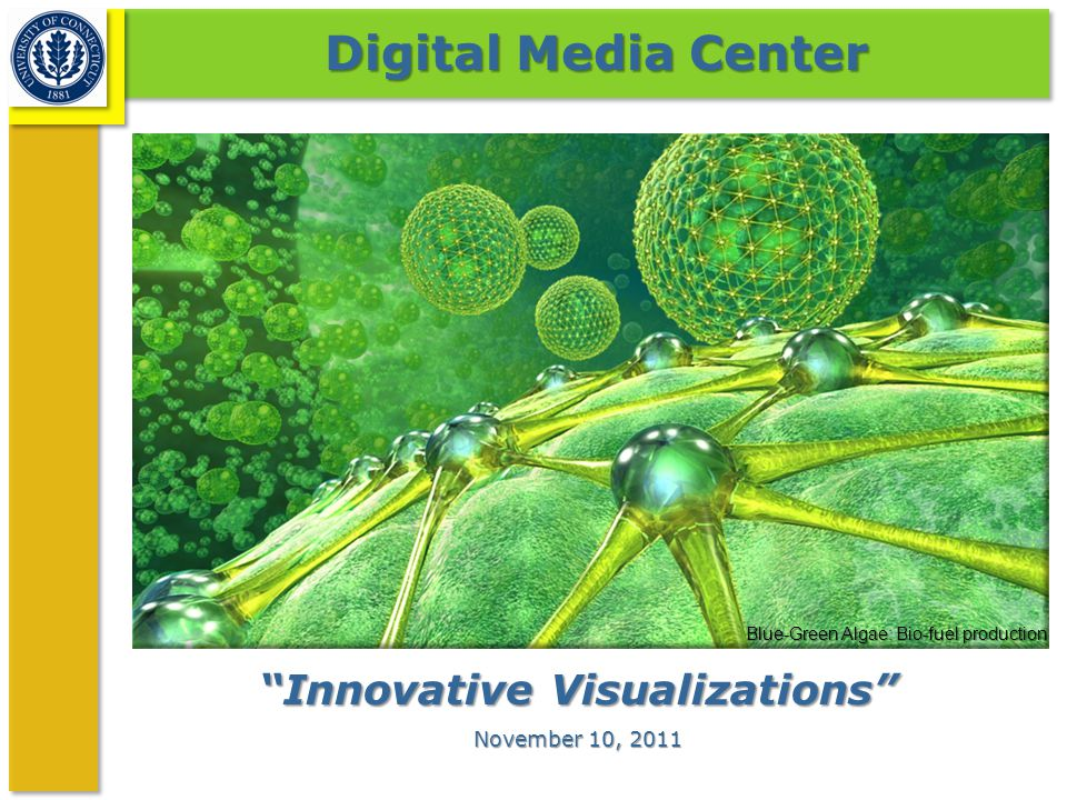 """Innovative Visualizations"" November 10, 2011 Digital Media Center Blue-Green Algae: Bio-fuel production"
