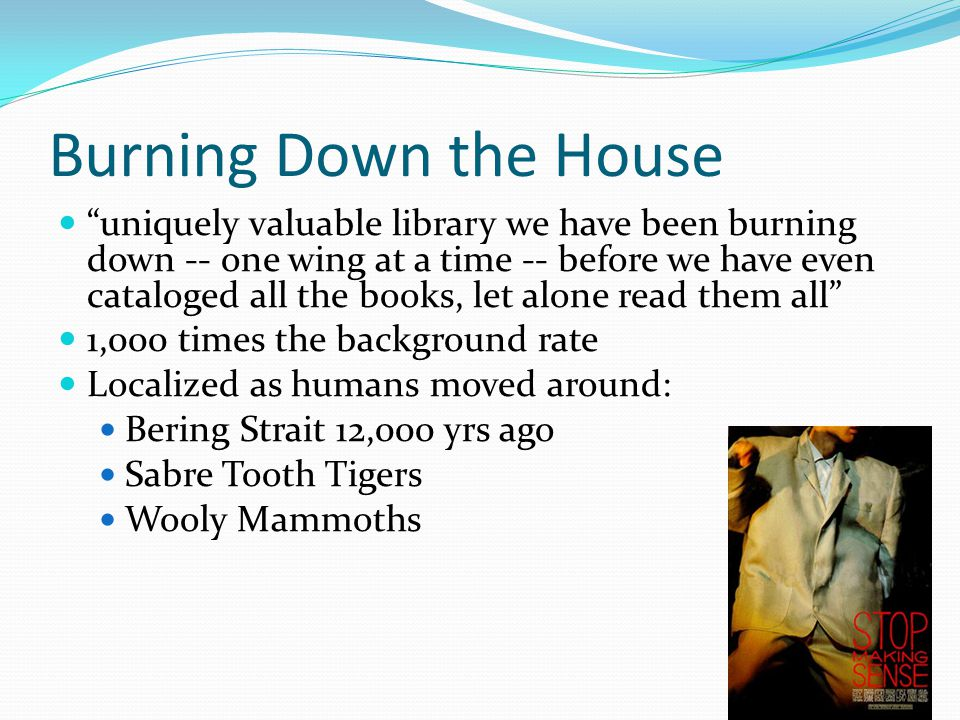 uniquely valuable library we have been burning down -- one wing at a time -- before we have even cataloged all the books, let alone read them all 1,000 times the background rate Localized as humans moved around: Bering Strait 12,000 yrs ago Sabre Tooth Tigers Wooly Mammoths Burning Down the House