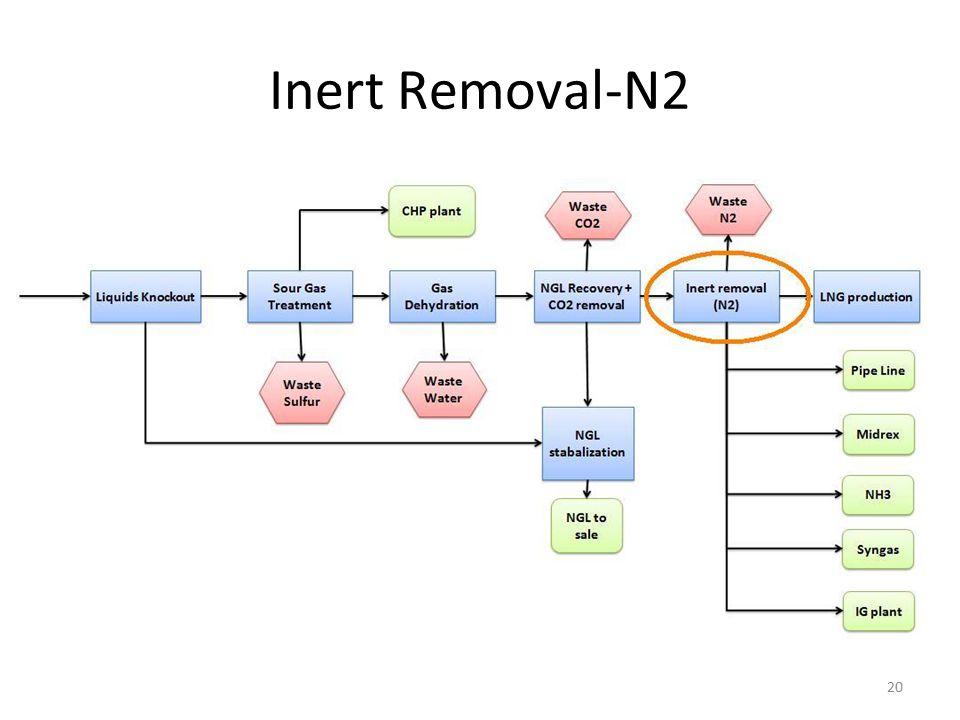 Inert Removal-N2 20