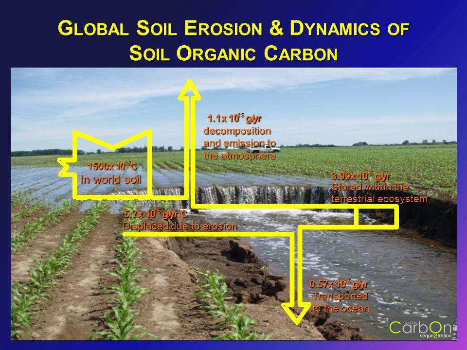G LOBAL S OIL E ROSION & D YNAMICS OF S OIL O RGANIC C ARBON 1500x 10 15 C 1.1x 10 10 15 g/ g/yr 5.7x 10 10 15 g/ g/yr C 3.99x 10 10 15 g/ g/yr 0.57x