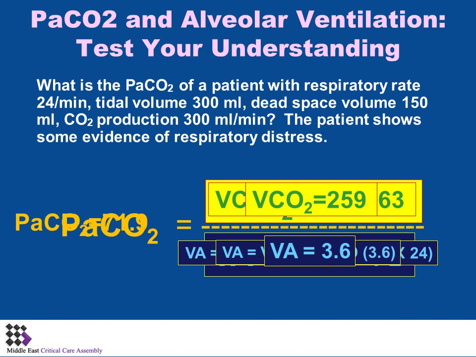VCO 2 X 0.863 PaCO2 and Alveolar Ventilation: Test Your Understanding What is the PaCO 2 of a patient with respiratory rate 24/min, tidal volume 300 ml, dead space volume 150 ml, CO 2 production 300 ml/min.
