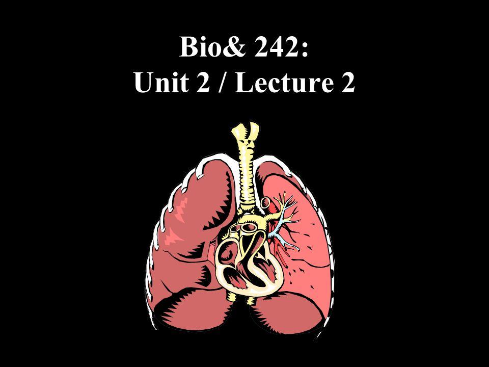 Bio& 242: Unit 2 / Lecture 2