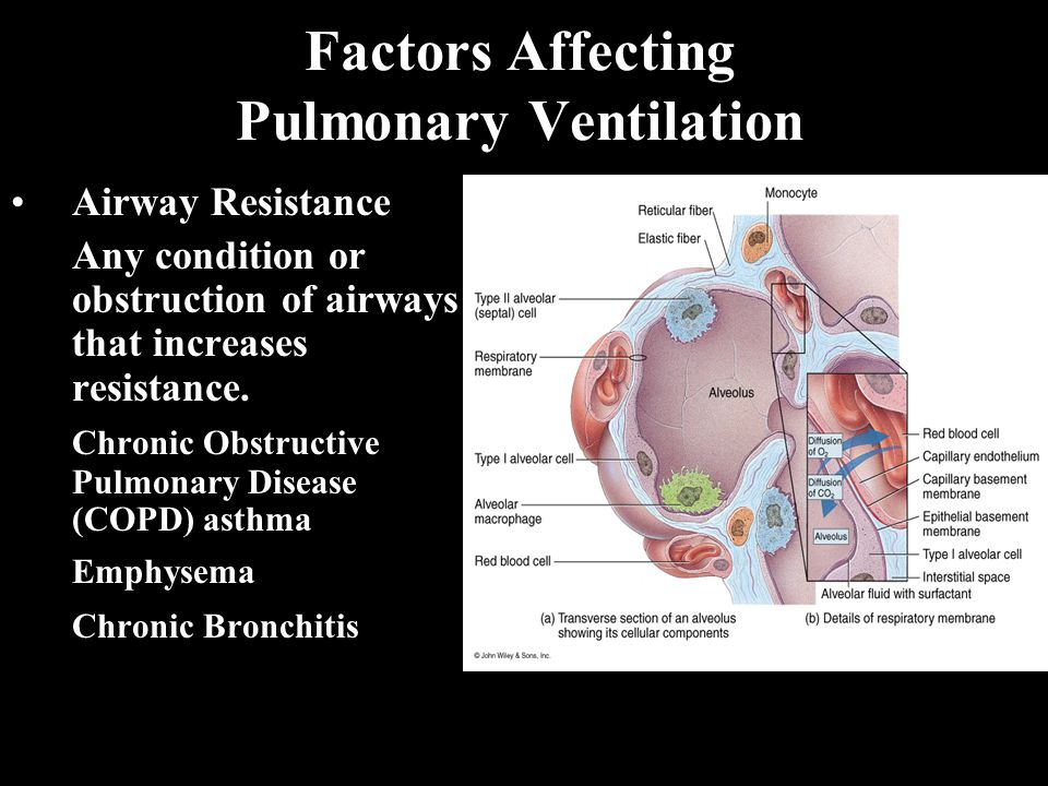 Factors Affecting Pulmonary Ventilation Airway Resistance Any condition or obstruction of airways that increases resistance.