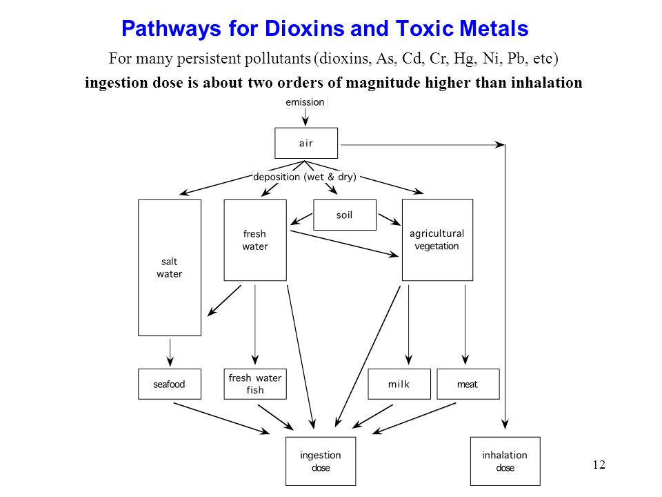12 Pathways for Dioxins and Toxic Metals For many persistent pollutants (dioxins, As, Cd, Cr, Hg, Ni, Pb, etc) ingestion dose is about two orders of magnitude higher than inhalation