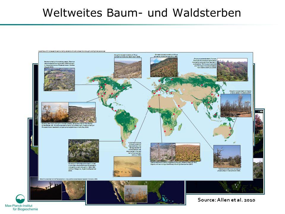 Weltweites Baum- und Waldsterben Source: Allen et al. 2010