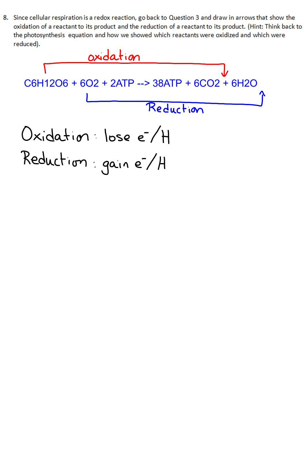 C6H12O6 + 6O2 + 2ATP --> 38ATP + 6CO2 + 6H2O