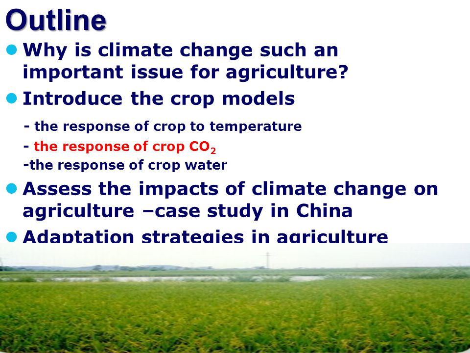 Outline Why is climate change such an important issue for agriculture? Introduce the crop models - the response of crop to temperature - the response
