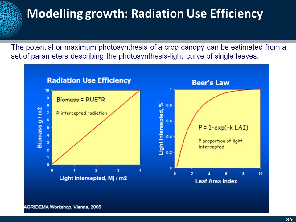 35 Modelling growth: Radiation Use Efficiency The potential or maximum photosynthesis of a crop canopy can be estimated from a set of parameters descr