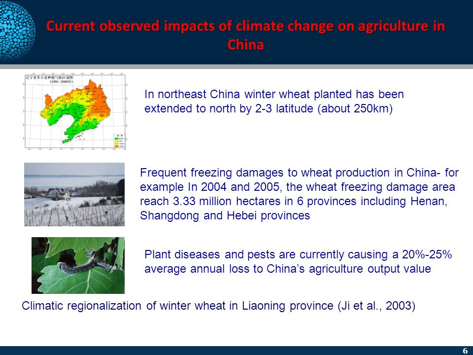 6 Current observed impacts of climate change on agriculture in China Climatic regionalization of winter wheat in Liaoning province (Ji et al., 2003) I