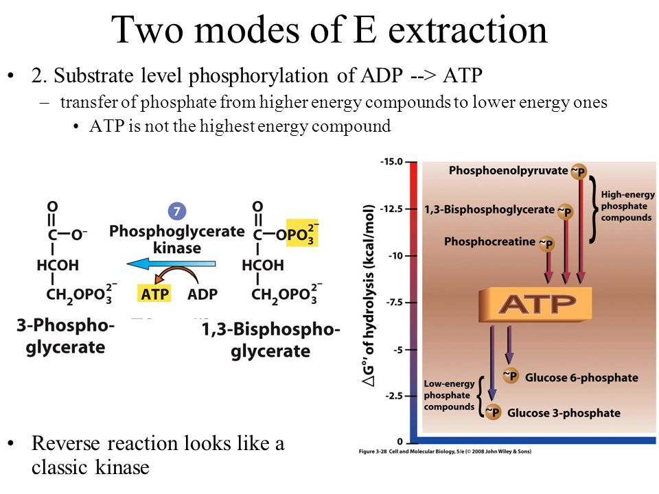 Two modes of E extraction 2.