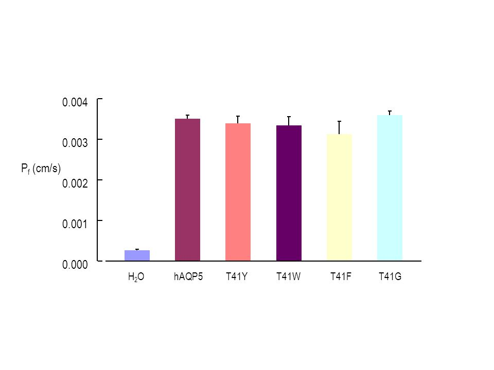 H2OH2O T41YT41WT41FT41G 0.000 0.001 0.002 0.003 0.004 P f (cm/s)