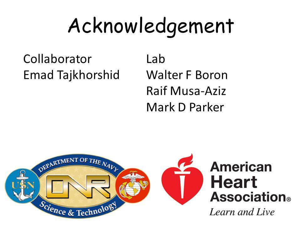 Acknowledgement Collaborator Emad Tajkhorshid Lab Walter F Boron Raif Musa-Aziz Mark D Parker