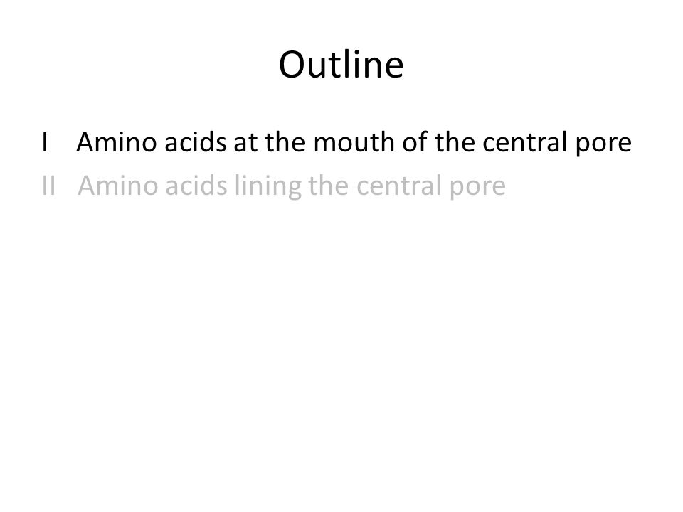 Outline I Amino acids at the mouth of the central pore II Amino acids lining the central pore