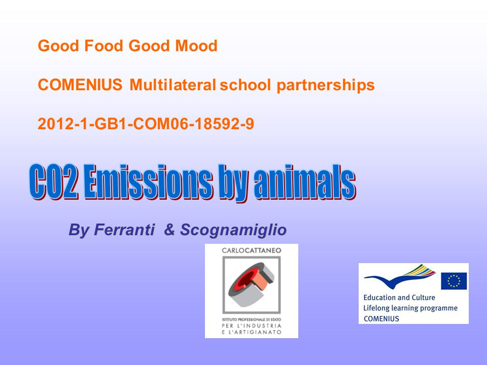 Good Food Good Mood COMENIUS Multilateral school partnerships 2012-1-GB1-COM06-18592-9 By Ferranti & Scognamiglio