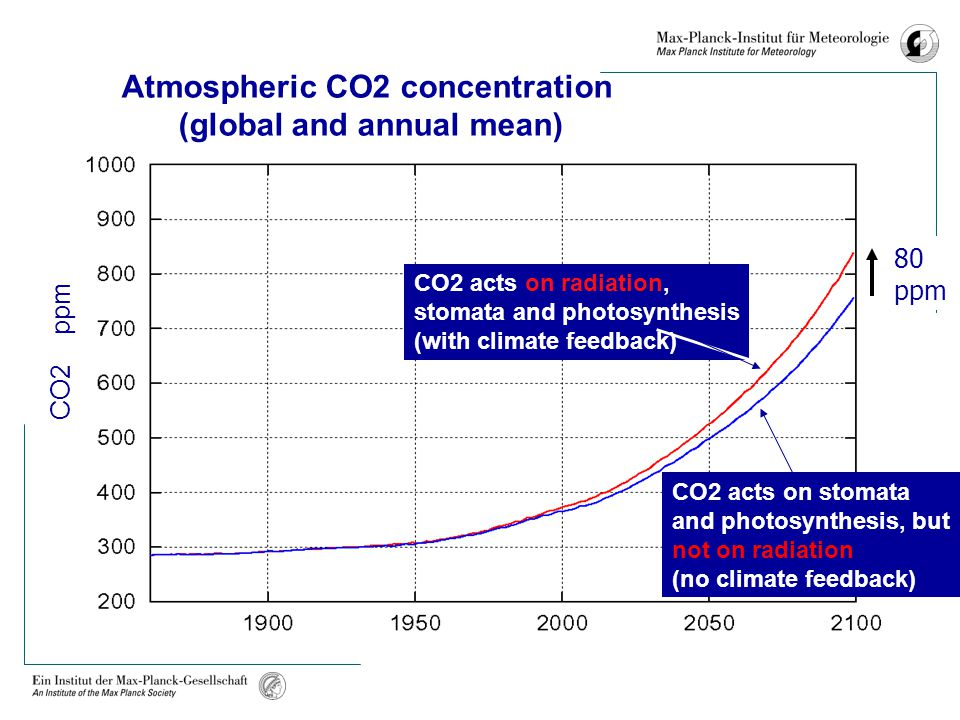 CO2 acts on radiation, stomata and photosynthesis (with climate feedback) CO2 acts on stomata and photosynthesis, but not on radiation (no climate feedback) CO2 ppm Atmospheric CO2 concentration (global and annual mean) year 80 ppm