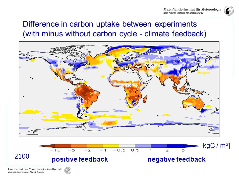 positive feedback negative feedback Difference in carbon uptake between experiments (with minus without carbon cycle - climate feedback) [kgC / m 2 ] 2100