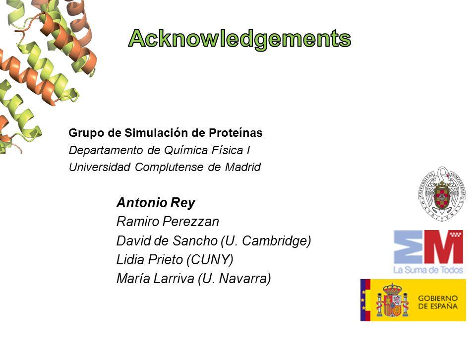 Grupo de Simulación de Proteínas Departamento de Química Física I Universidad Complutense de Madrid Antonio Rey Ramiro Perezzan David de Sancho (U.