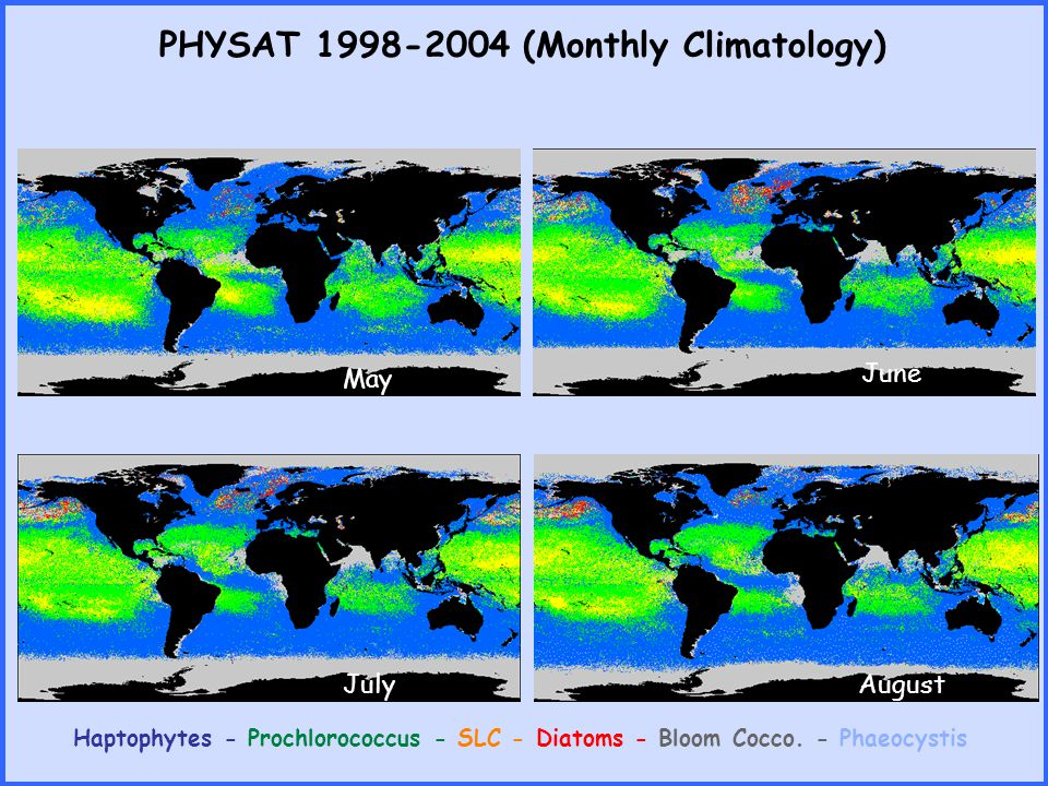 PHYSAT 1998-2004 (Monthly Climatology) Haptophytes - Prochlorococcus - SLC - Diatoms - Bloom Cocco. - Phaeocystis May June July August