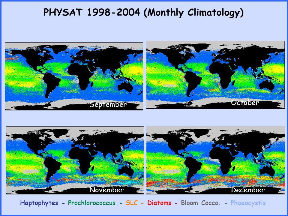 PHYSAT 1998-2004 (Monthly Climatology) Haptophytes - Prochlorococcus - SLC - Diatoms - Bloom Cocco. - Phaeocystis SeptemberOctober NovemberDecember
