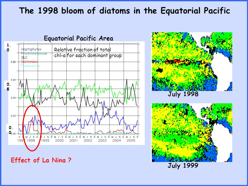 The 1998 bloom of diatoms in the Equatorial Pacific Equatorial Pacific Area Effect of La Nina ? July 1998 July 1999 Haptophytes Prochlorococcus SLC Di