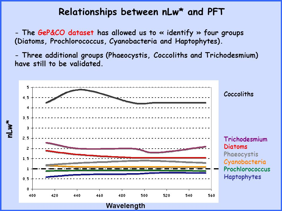 The PHYSAT method nLw obs and Chl-a SeaWiFS nLw* = nLw obs / nLw ref (Chl-a) Identification of the dominant PFT for the pixel Haptophytes-Prochlorococcus-Synechococcus-Diatoms Daily Level-3 GAC data nLw* Wavelength Most frequent dominant PFT for the month January 2001