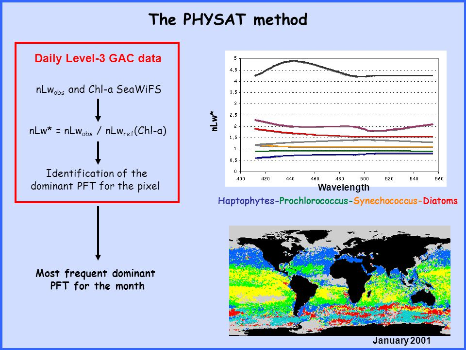 The PHYSAT method nLw obs and Chl-a SeaWiFS nLw* = nLw obs / nLw ref (Chl-a) Identification of the dominant PFT for the pixel Haptophytes-Prochlorococ