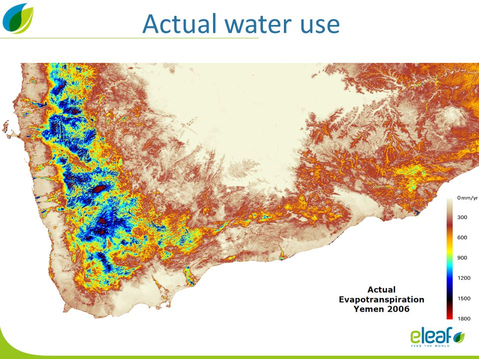 Actual water use