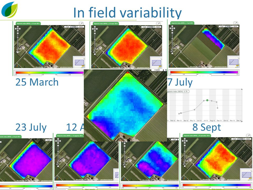 In field variability 25 March25 May7 July 23 July12 Aug 4 Sept8 Sept