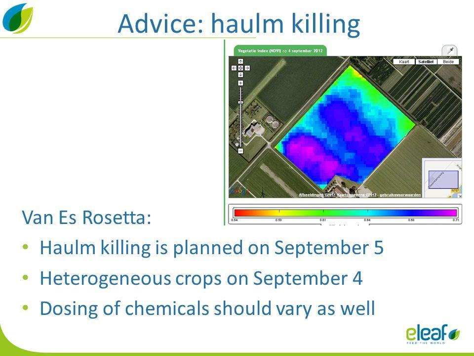 Advice: haulm killing Van Es Rosetta: Haulm killing is planned on September 5 Heterogeneous crops on September 4 Dosing of chemicals should vary as well