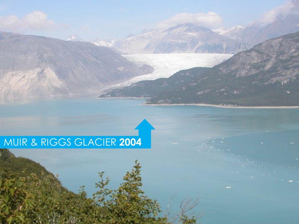 MUIR & RIGGS GLACIER 2004