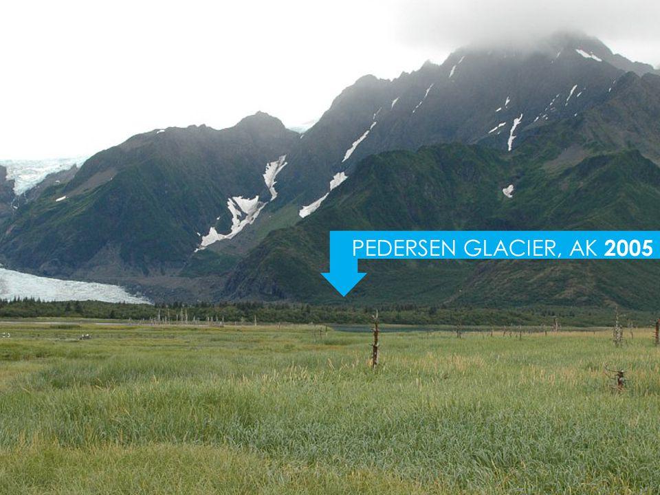 PEDERSEN GLACIER, AK 2005