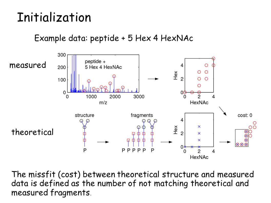 measured theoretical Initialization The missfit (cost) between theoretical structure and measured data is defined as the number of not matching theoretical and measured fragments.