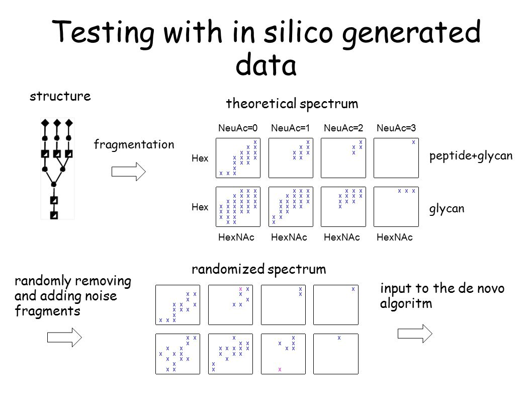 Testing with in silico generated data structure theoretical spectrum fragmentation randomly removing and adding noise fragments NeuAc=0NeuAc=1NeuAc=2NeuAc=3 Hex HexNAc peptide+glycan glycan input to the de novo algoritm randomized spectrum