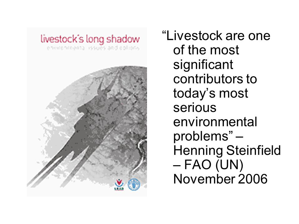 """Livestock are one of the most significant contributors to today's most serious environmental problems"" – Henning Steinfield – FAO (UN) November 2006"